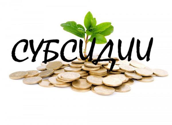 Предпринимателям области добавят субсидий